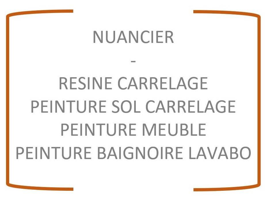 Nuancier Peinture Epoxy Pour Carrelage Sol Baignoire Meuble Arcane Industries